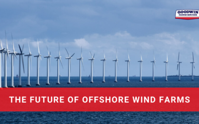 The Future of Offshore Wind Farms